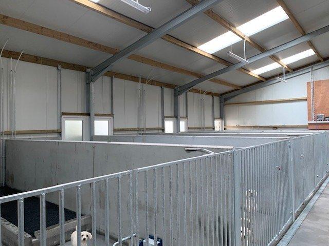 Dog Kennel interior view
