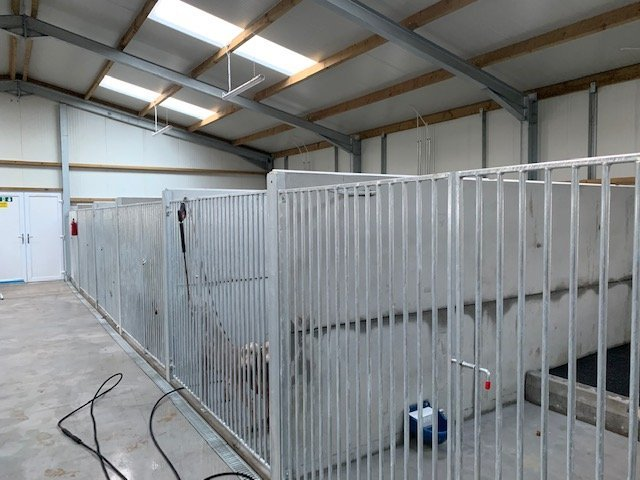 kennel partitions